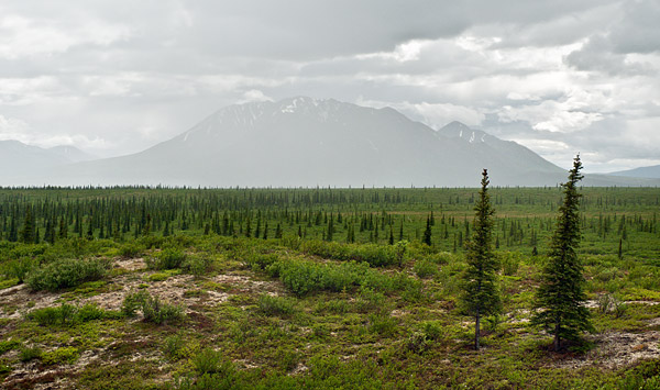 Views of the Alaska Range from the Denali Highway, a 135-mile gravel road that leads to the Parks Highway and Denali National Park