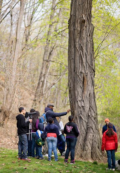 A hike through Highbridge Park to look at trees