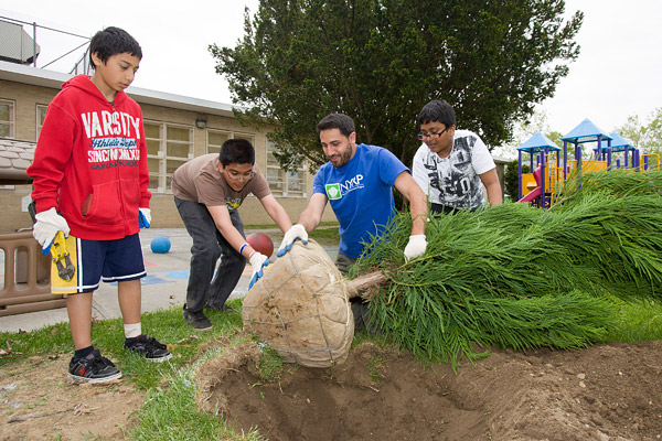 5th graders plant trees in Queens