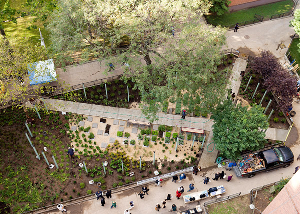 Aerial view of the Planters Grove