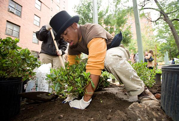 New York City Planters Grove