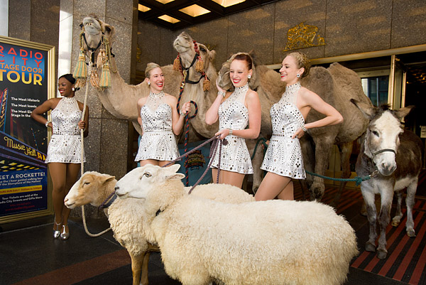 Rockettes with animals from nativity scene