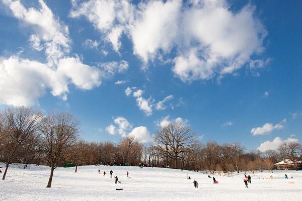 Prospect Park sledding