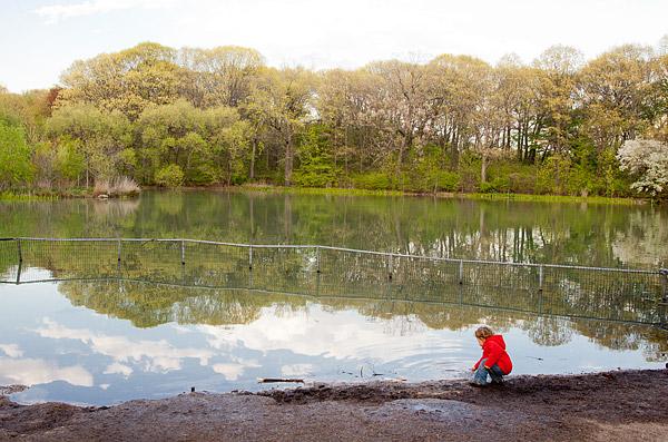 Pond at Prospect Park, New York