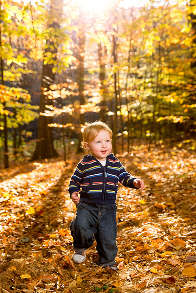 Judah frolics in the fall foliage of New England's Berkshire Mountains.